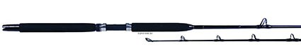 Fisher Scientific Billfisher ST2050 Trolling Rod